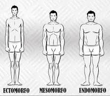 tipo di corpo